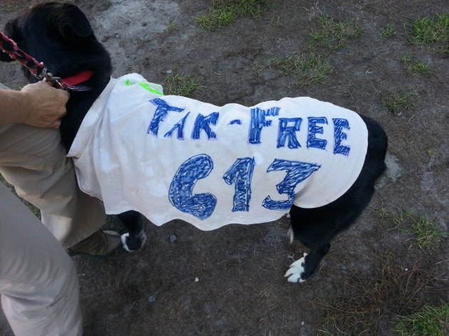 Dogs against tar sands pipelines.