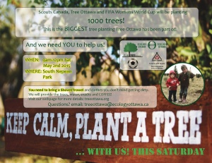 Big Tree PLanting - Poster-page-001