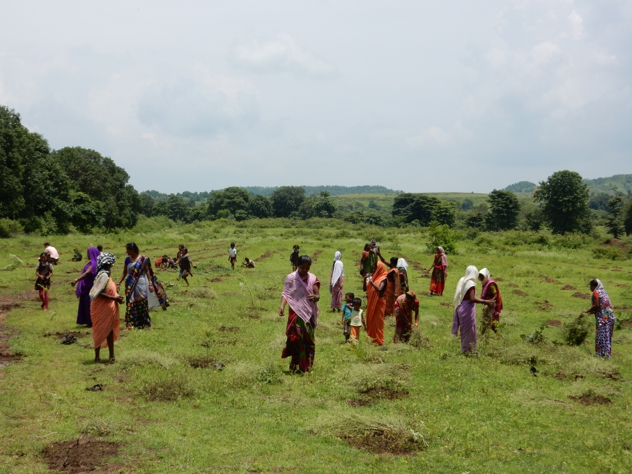 women_and_children_plant_trees