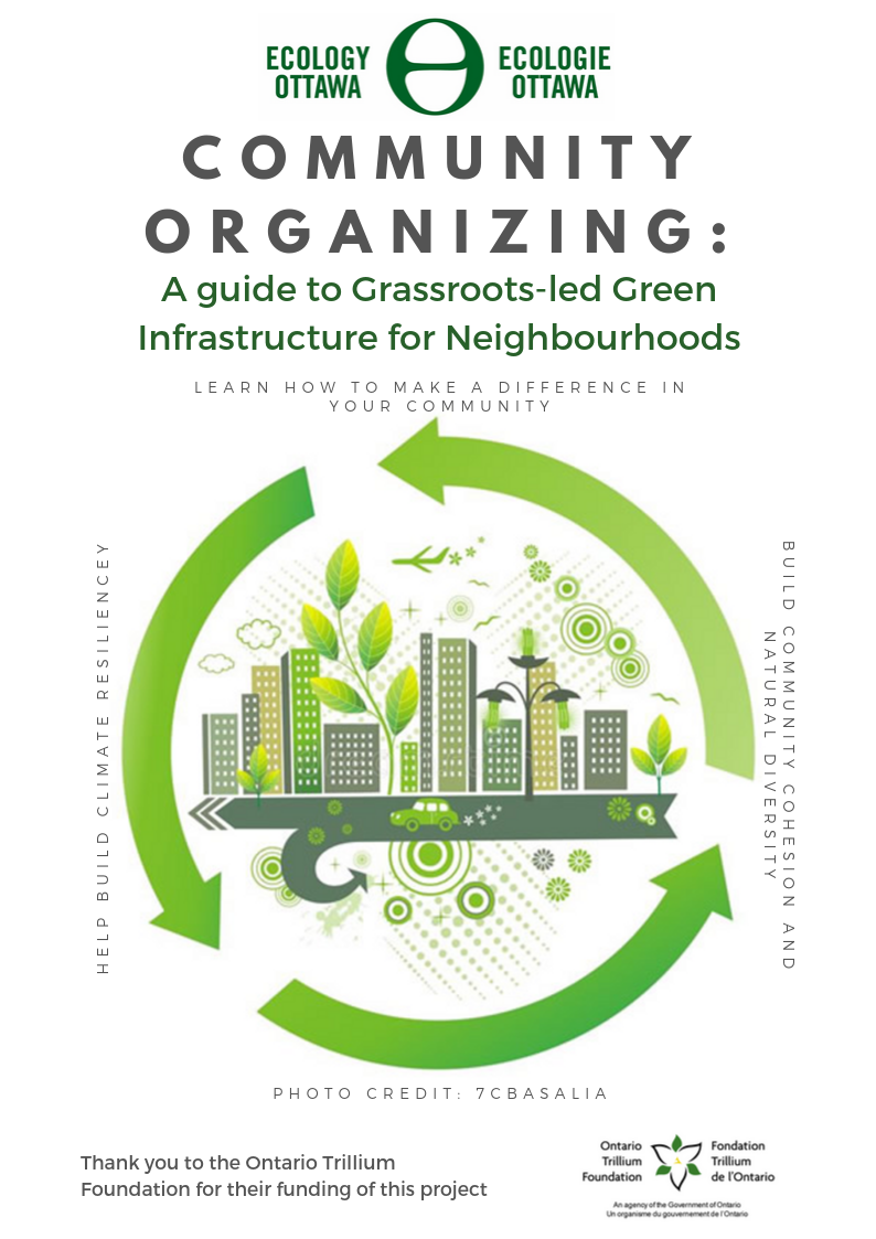 Community Organizing_ A guide to Grassroots-led Green Infrastructure for Neighbourhoods
